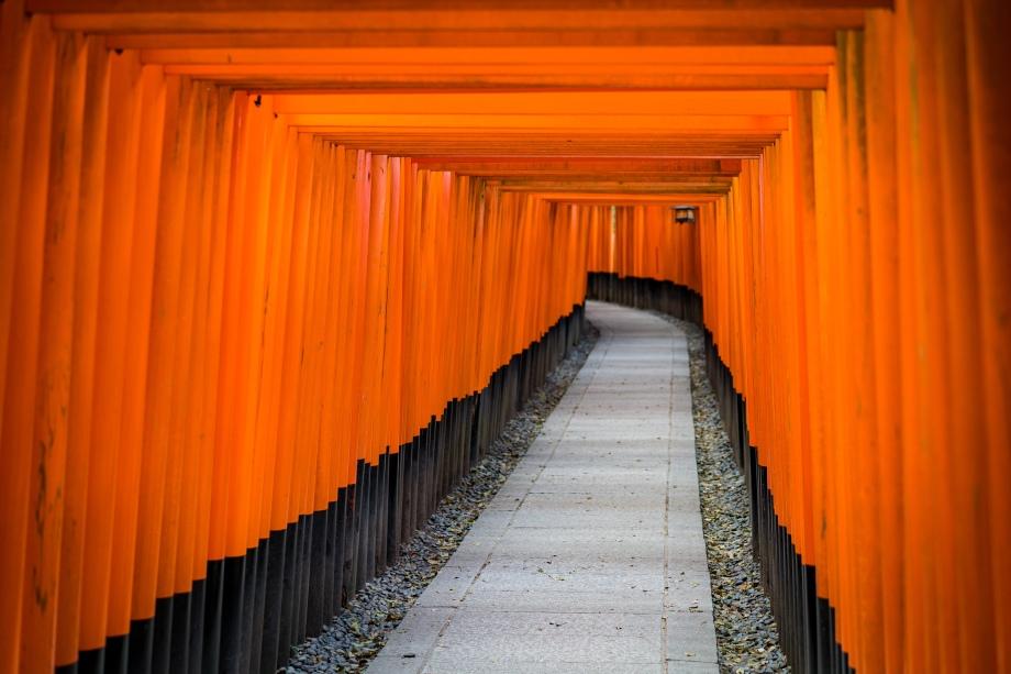 fushimi inari-taisha torii 2